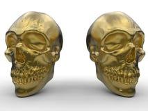 Golden skull on white background Stock Image