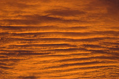 Golden sky waves Stock Photos