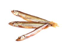 Golden smoke sprats Royalty Free Stock Photo