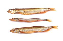 Golden smoke sprats Stock Photos