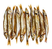 Golden smoked sprats Stock Photo