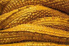 Golden snake Royalty Free Stock Photography