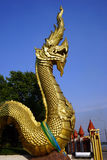 Golden snake Naga Royalty Free Stock Photos