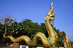 Golden snake Naga Royalty Free Stock Image