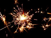 Golden sparkler Stock Image