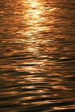 Golden sparkling morning sunlight reflections on the sea water surface with gentle ripples Royalty Free Stock Images