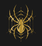 Golden spider and web. Spider and web in the form of a geometric figure. Golden symbol on a dark background Royalty Free Stock Photos