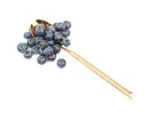 Golden spoon full of bilberries Stock Photography