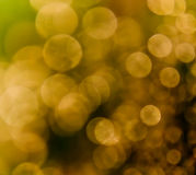 Golden Spots Royalty Free Stock Photo