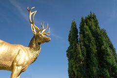Golden Stag Statue Drachenburg Castle Bonn Germany Blue Sky Travel stock photo