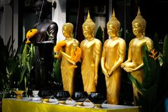 Golden Standing Buddha Statues in a Row. Royalty Free Stock Images
