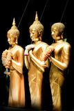 Golden Standing Buddha Statues in a Row. Royalty Free Stock Photo