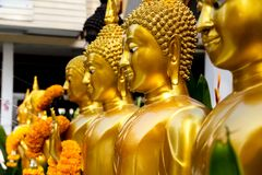 Golden Standing Buddha Statues in a Row. Stock Image