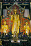 Golden standing Buddha in Viharn of Wat Chedi Luang,Thailand. Royalty Free Stock Images