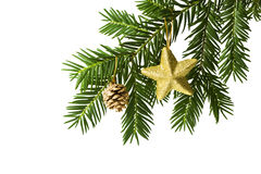 Golden star and pine cone on christmas tree branch Stock Photo