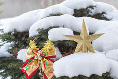 Golden star and ribbon christmas decoration. Stock Photography