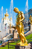 Golden statue in Petergof, St. Petersburg, Russia. Golden statue at Grand cascade fountains in Petergof, St Petersburg, Russia Stock Photography