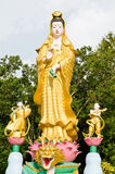 Golden statue of Guan Yin with children in temple at Phan Nga, T Stock Photo