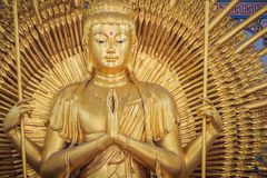 Golden statue of Guan Yin with 1000 hands. Guanyin or Guan Yin i. S an East Asian bodhisattva associated with compassion as venerated by Mahayana Buddhists and Royalty Free Stock Photo