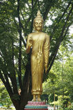 Golden Statue Of Buddha Blessing Royalty Free Stock Photography