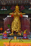 Golden Statue and offerings in Traditional Chinese Buddhist temple in Lumbini, Nepal Royalty Free Stock Images