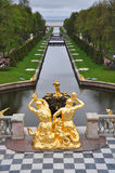 Golden statues and fountains of Peterhof Palace, Saint Petersburg. Symmetric view of the garden of Peterhof Palace located in St. Petersburg, Russia. Golden stock images