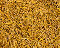 Golden straw Royalty Free Stock Photos