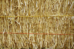 Golden straw bale Royalty Free Stock Images