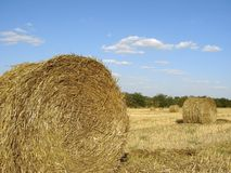 Golden straw bales Stock Photography