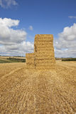 Golden straw bales Royalty Free Stock Image