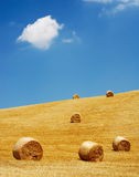 Golden straw bales in sunlight Stock Photography