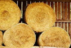 Golden straw barn Royalty Free Stock Images