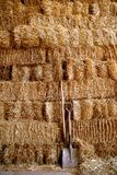 Golden straw barn stacked Stock Photography