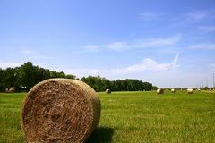 Golden Straw Hay Bales in american countryside Royalty Free Stock Photo