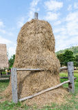 Golden straw stack Stock Images