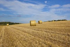 Golden straw bales Royalty Free Stock Photos