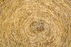Agriculture farming straw roll background texture. Golden straw texture background, close-up, agriculture farming concept royalty free stock photo