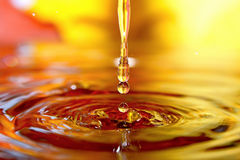 Golden stream. Royalty Free Stock Images