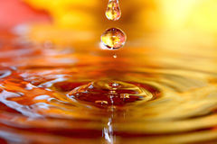 Golden stream. Royalty Free Stock Image