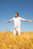 Golden summer Stock Photos