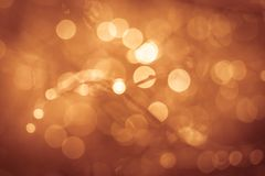 Golden summer nature abstract background concept, soft focus. Bokeh, warm tones stock images