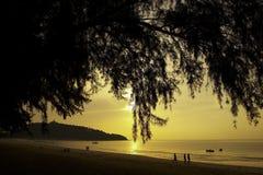 Golden sun raise Stock Photos