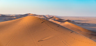 Golden sunlight over ridges and shapes of sand dunes in the majestic Namib Naukluft National Park at Walvisbaai, scenic tourist an Stock Images