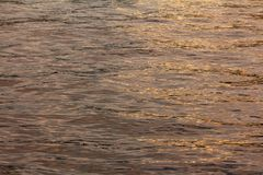 Golden sunny color on the water. Sunset light on the water. golden sunny color on the waves. texture for design royalty free stock photos
