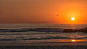 Golden Sunrise at beach Stock Photography