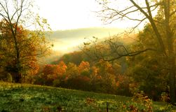 Golden Sunrise on Fall Morning. Golden rays from rising sun warms this early morning scene.  Fall foilage in orange and gold with green hillside in foreground Stock Photo