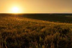 Golden Sunrise At Kansas Tallgrass Prairie Preserve National Park. A golden sunrise illuminates the bluestem grass and expansive rolling hills of the Kansas Stock Photo
