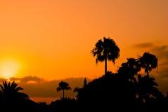 Golden sunrise. Sunrise over Corralejo in Fuerteventura Stock Photos