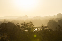 Golden sunrise in Prague taken from the Letna park, with cityscape and the Vltava river on the horizon. And trees and vegetation in the foreground stock photography