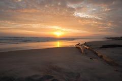 Golden sunrise. Stock Images